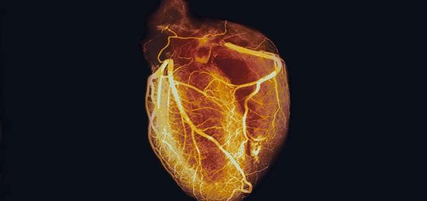 3rd Annual Joint Cardiovascular-Diabetes Symposium